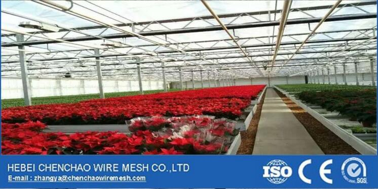 Good quality and best price fixed greenhouse bench